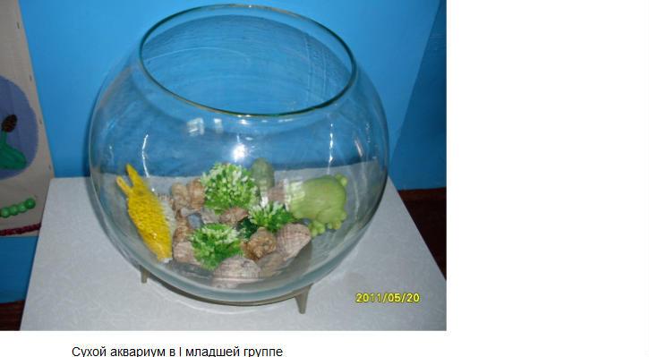 Как сделать сухой аквариум для детского сада своими руками